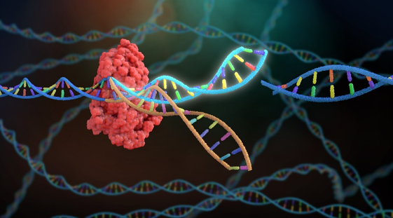 CRISPR Screen Sequencing, Innovating Sequencing Technology that Can Facilitate COVID-19 Research