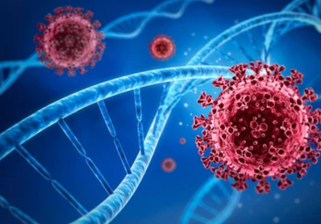 The Applications and Methods of Next-Generation Sequencing of SARS-CoV-2 on COVID-19 Research