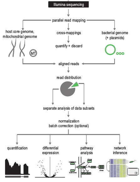 Dual RNA-seq